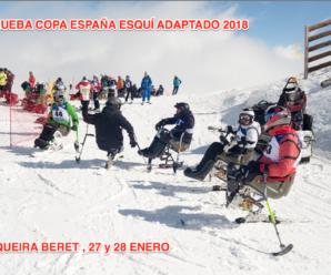 1ª Copa de España Esquí Adaptado 2018